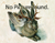 Chaenocephalus_aceratus